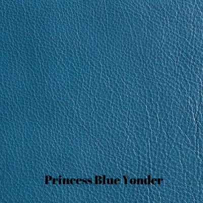 Caprone-Wild-Blue-Yonder.jpg