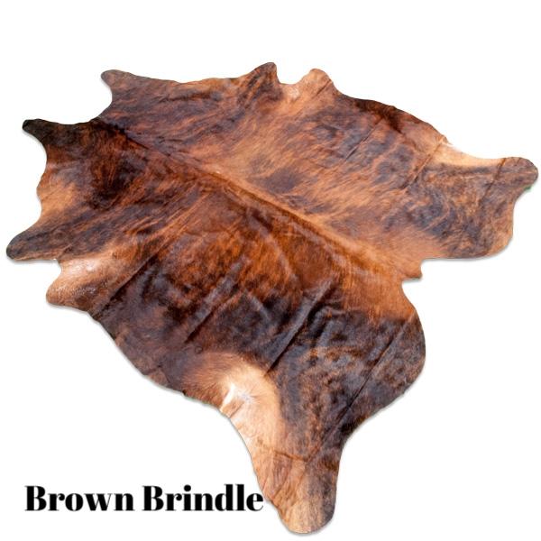 Brown Brindle.jpg