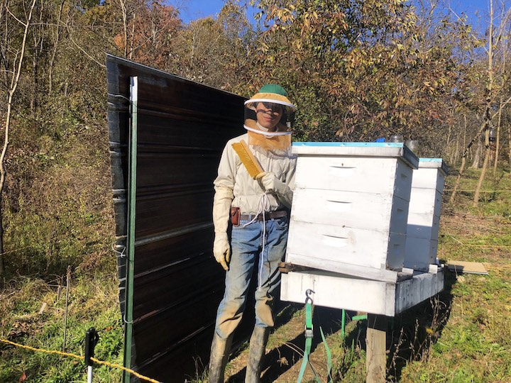 "WOOFer Max helping winterize our colonies by adding insulation and giving our hives a ""tilt"""