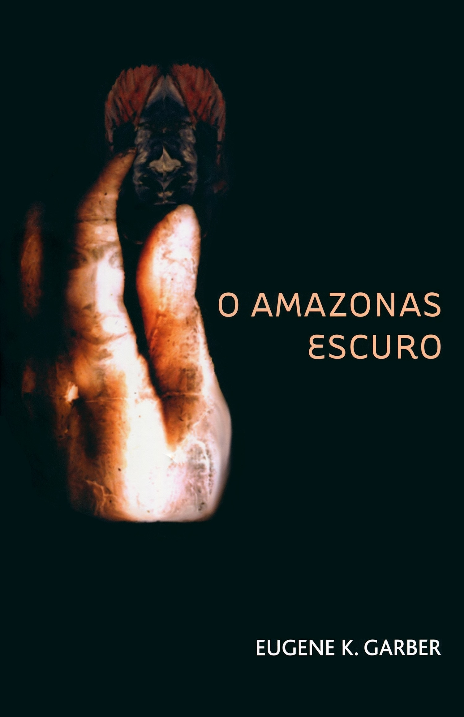 O Amazonas Escuro, Novel by Eugene K Garber, cover photo