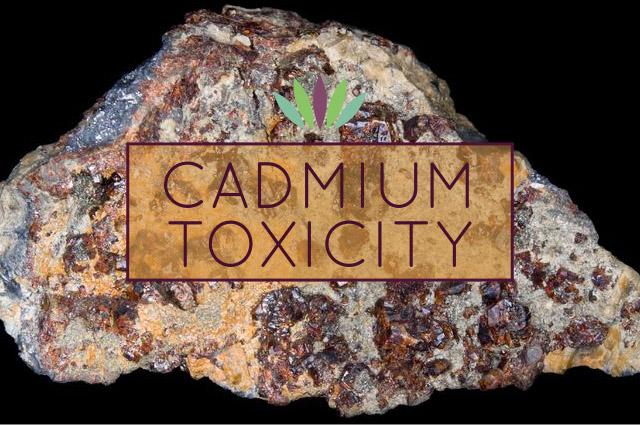 Cadmium-Toxicity.jpg