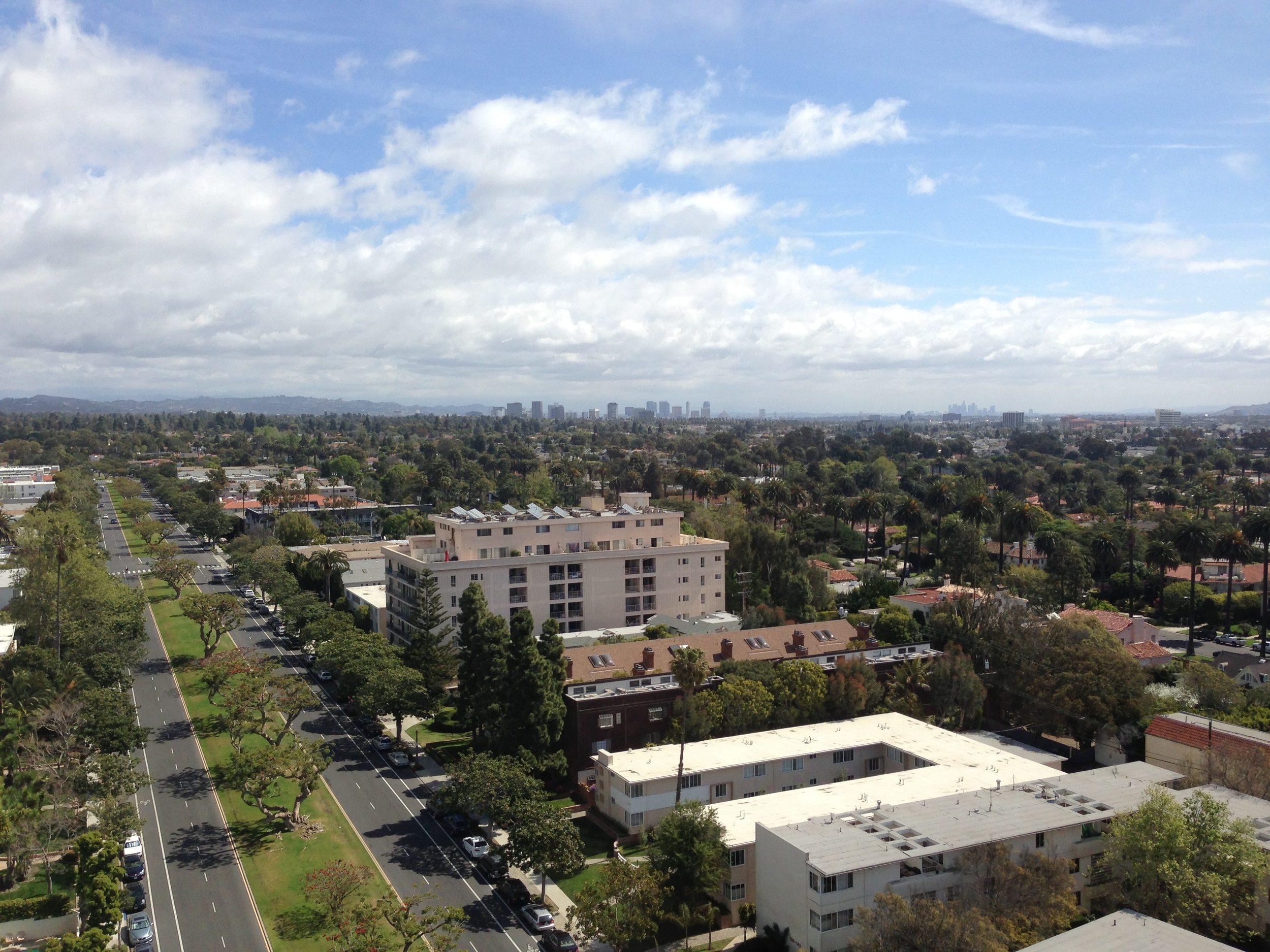 OT Downtown LA View.jpg