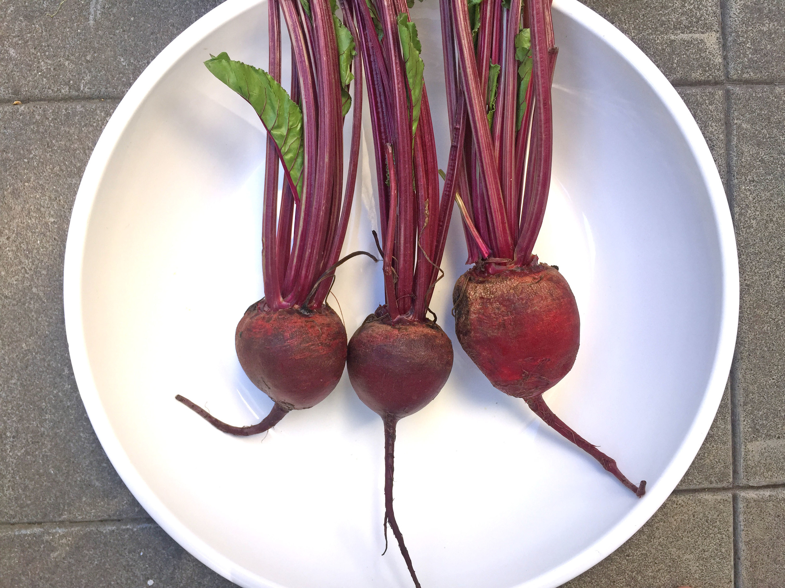 beets in a bowl
