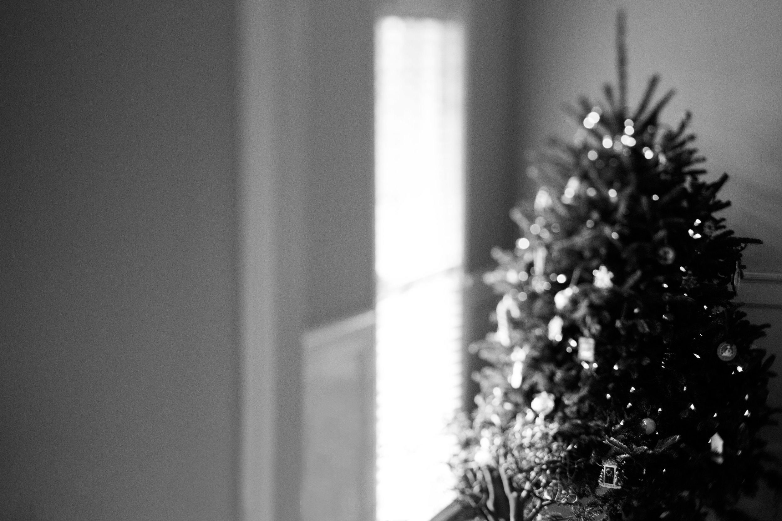 I hope your holidays were wonderful!
