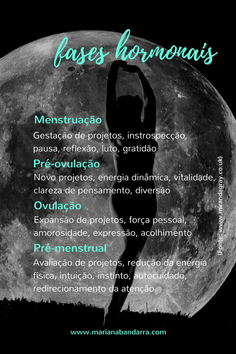 fases da lua (2).png