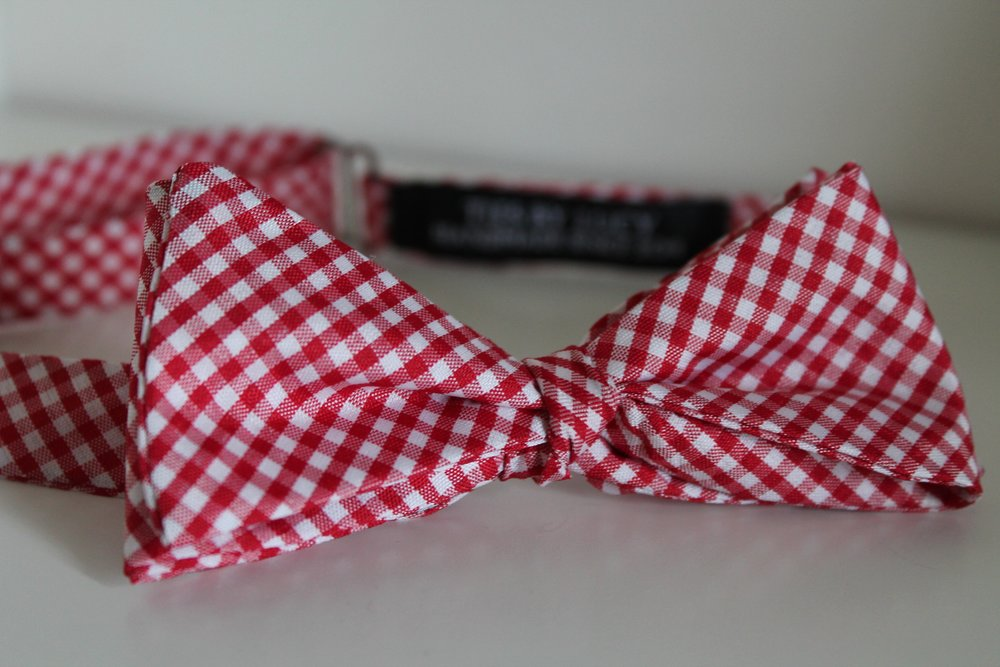 Copy of Red gingham
