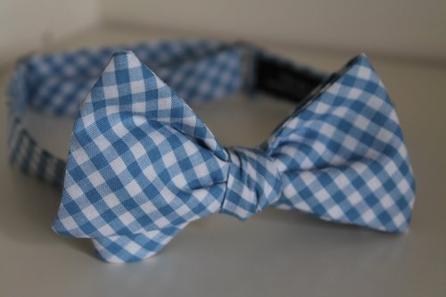 Copy of Light blue gingham