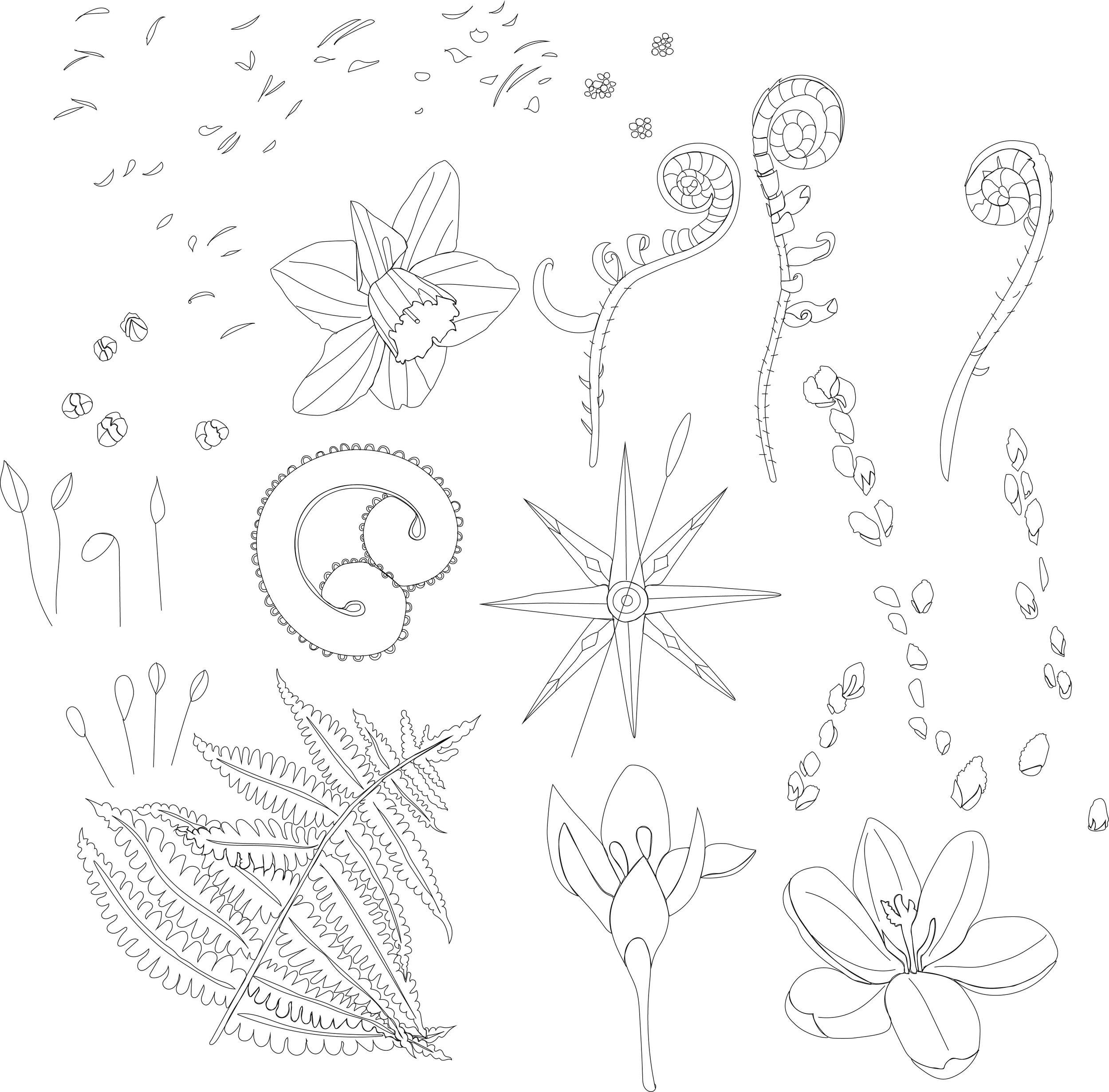 Vector drawings of my original pencil sketches