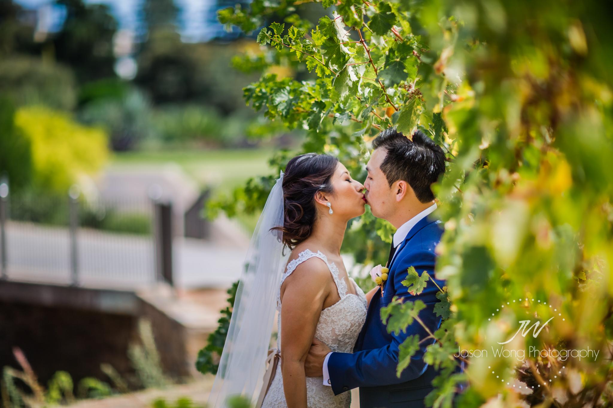 vineyard-romantic-newlywed-kiss.jpg
