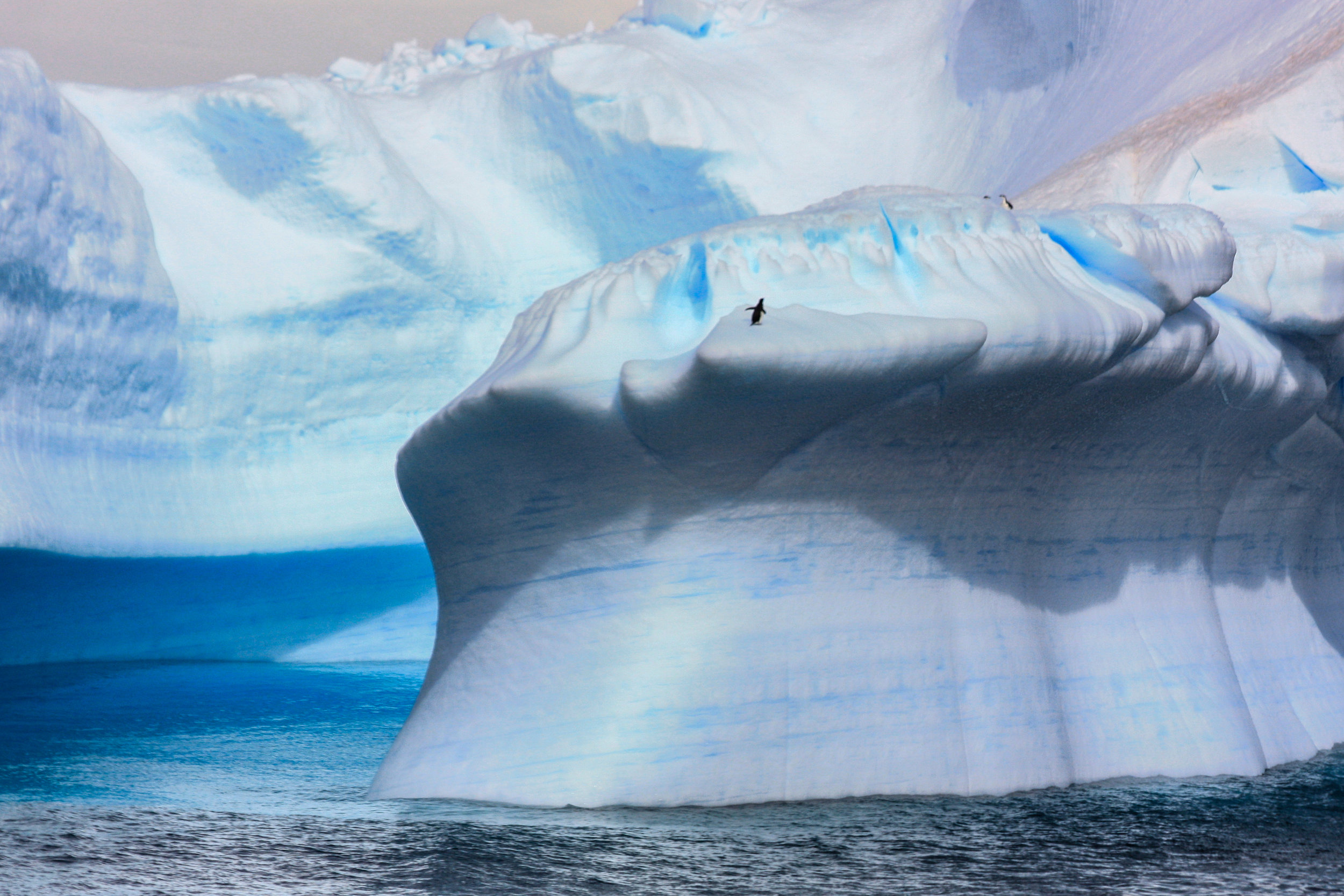 Antarctic Sound, Antartica