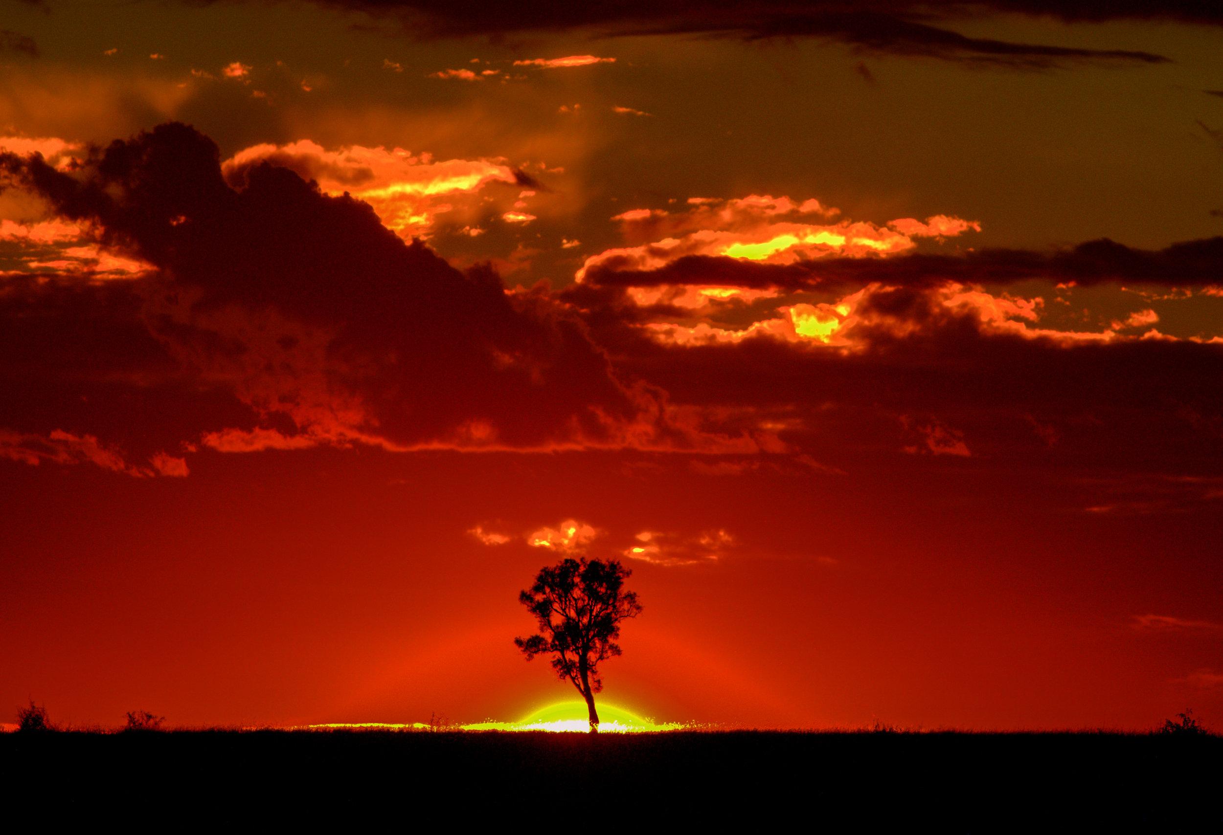 Miles, Australia
