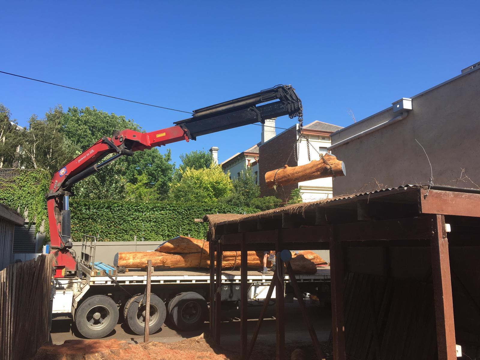 Timber Salvage