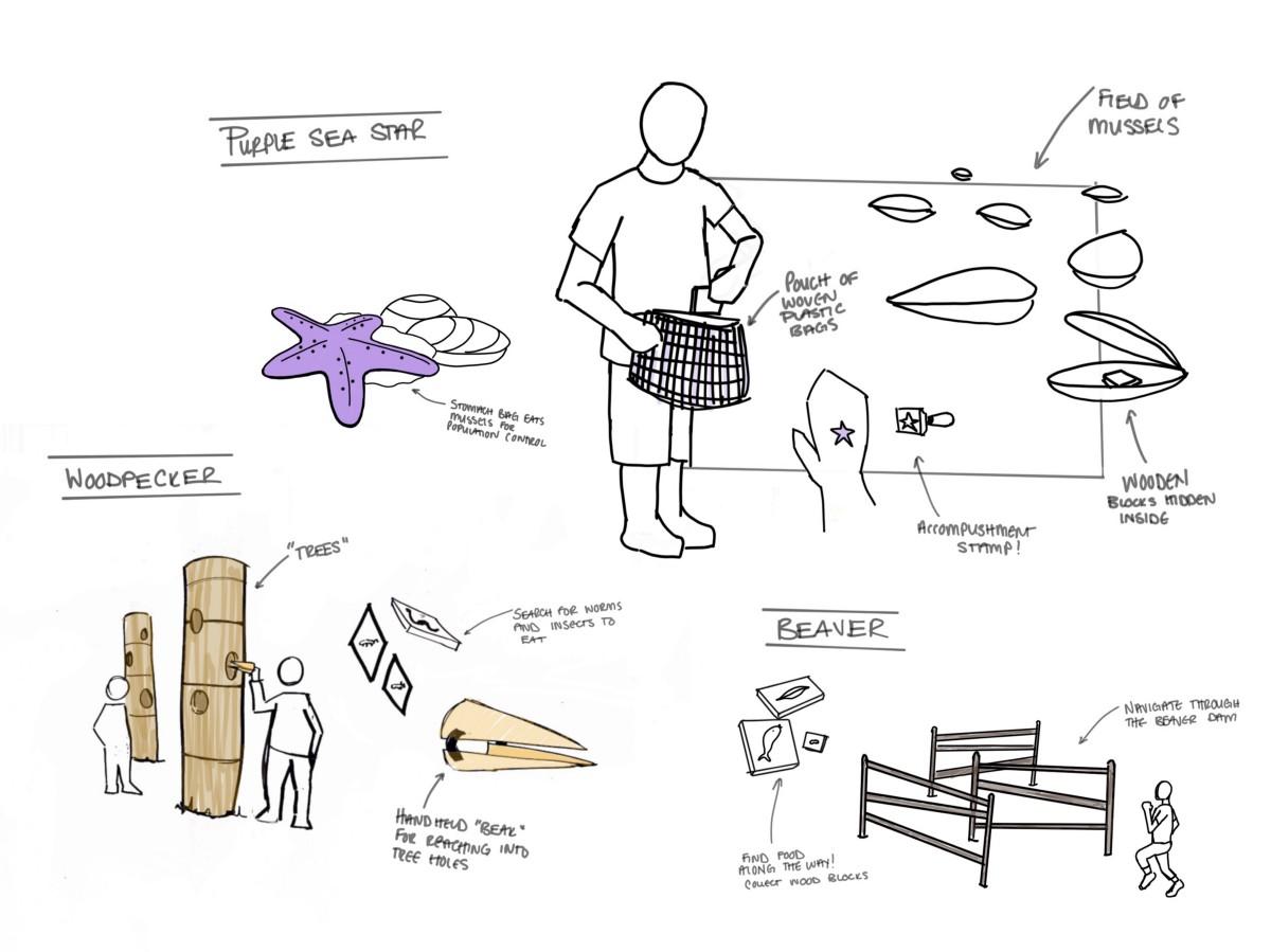 sketching activities.jpeg