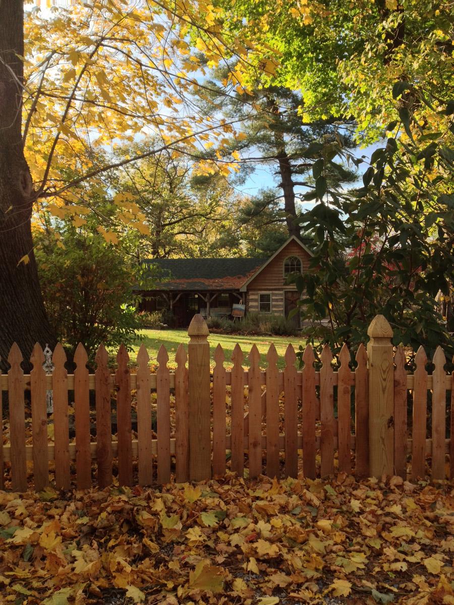 Morningstar Studio Fall Leaves