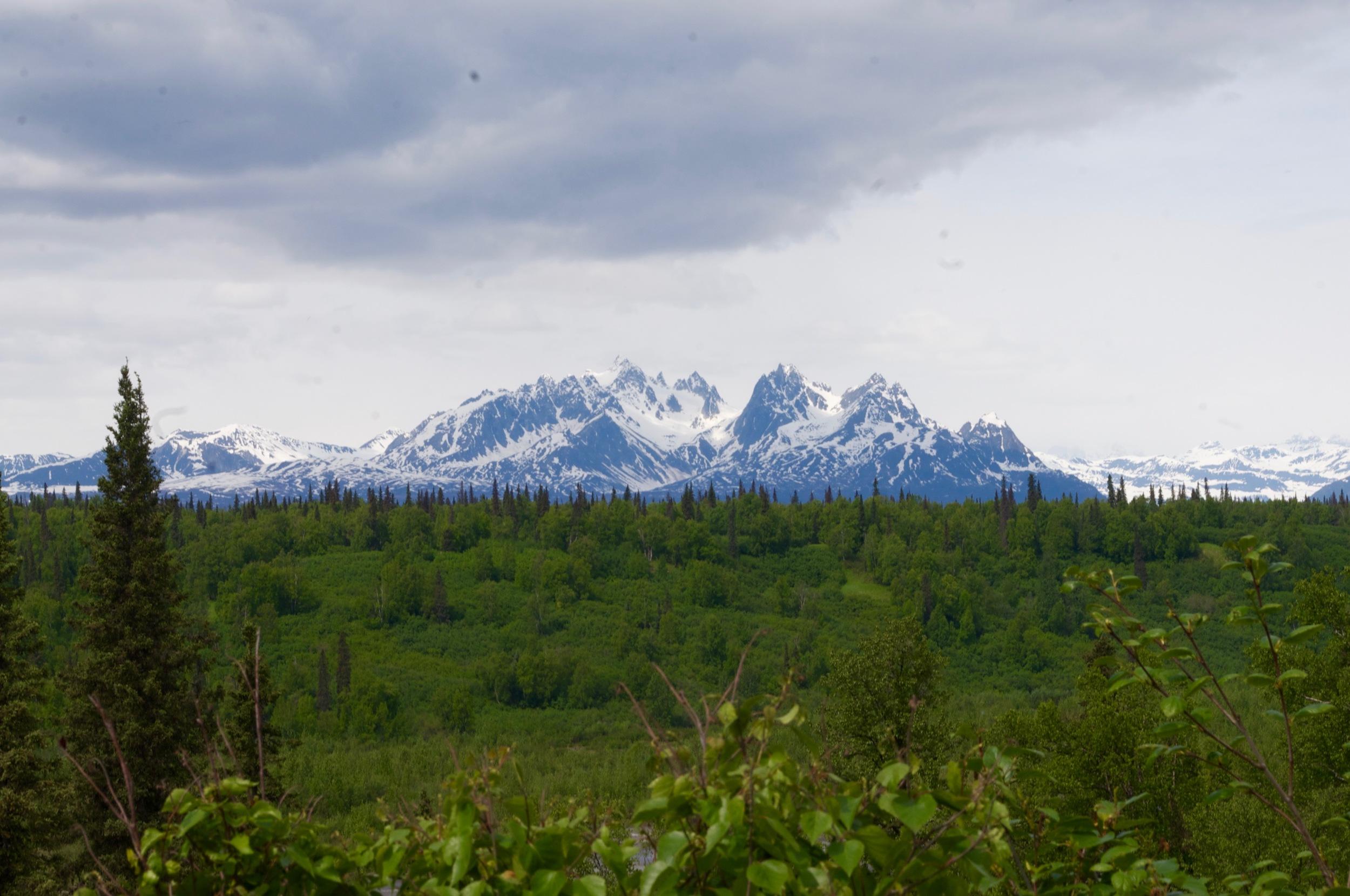 Denali! The highest mountain peak in North America.