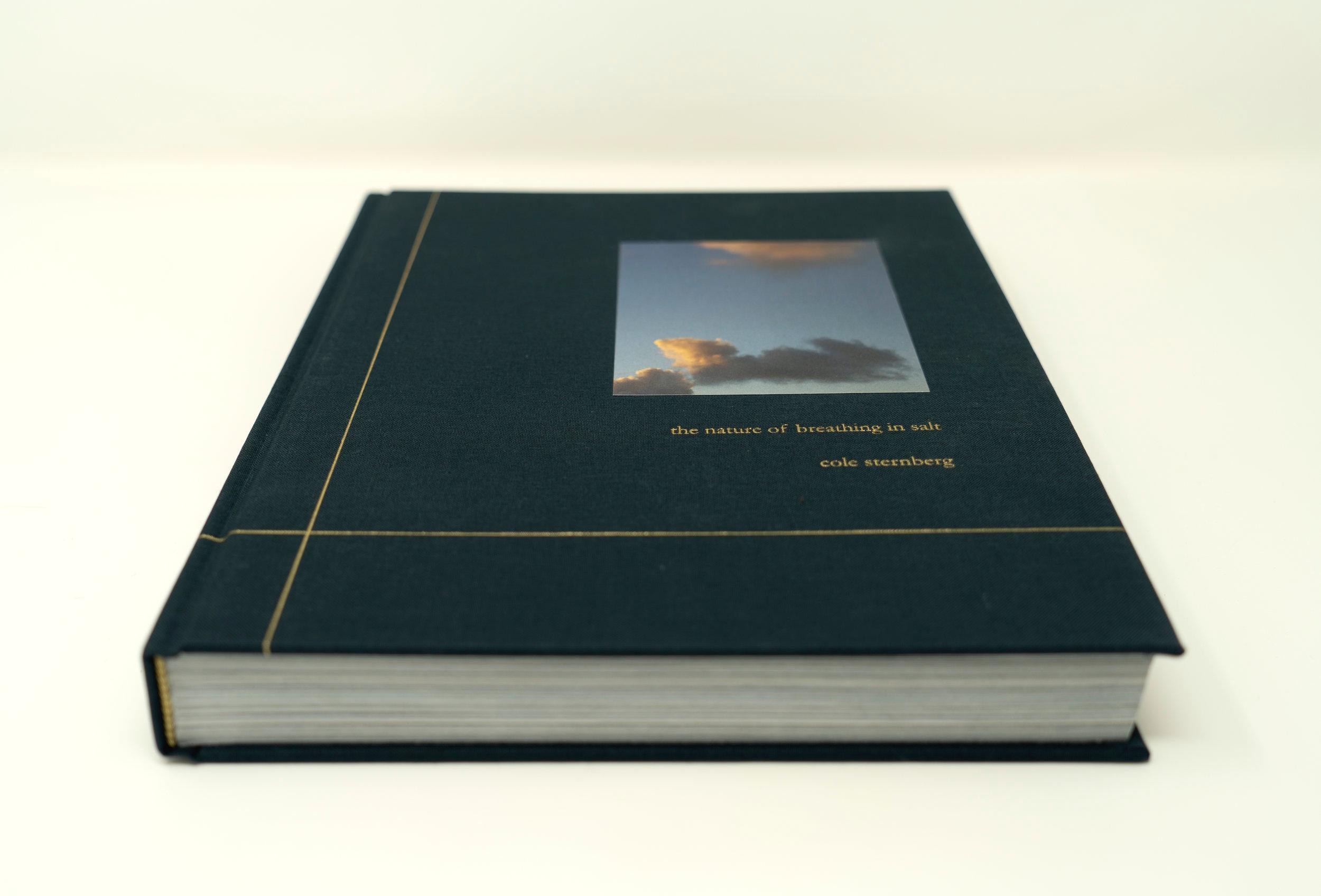 The+Nature+of+Breathing+in+Salt+-+Cole+Sternberg+-+Cover.jpg
