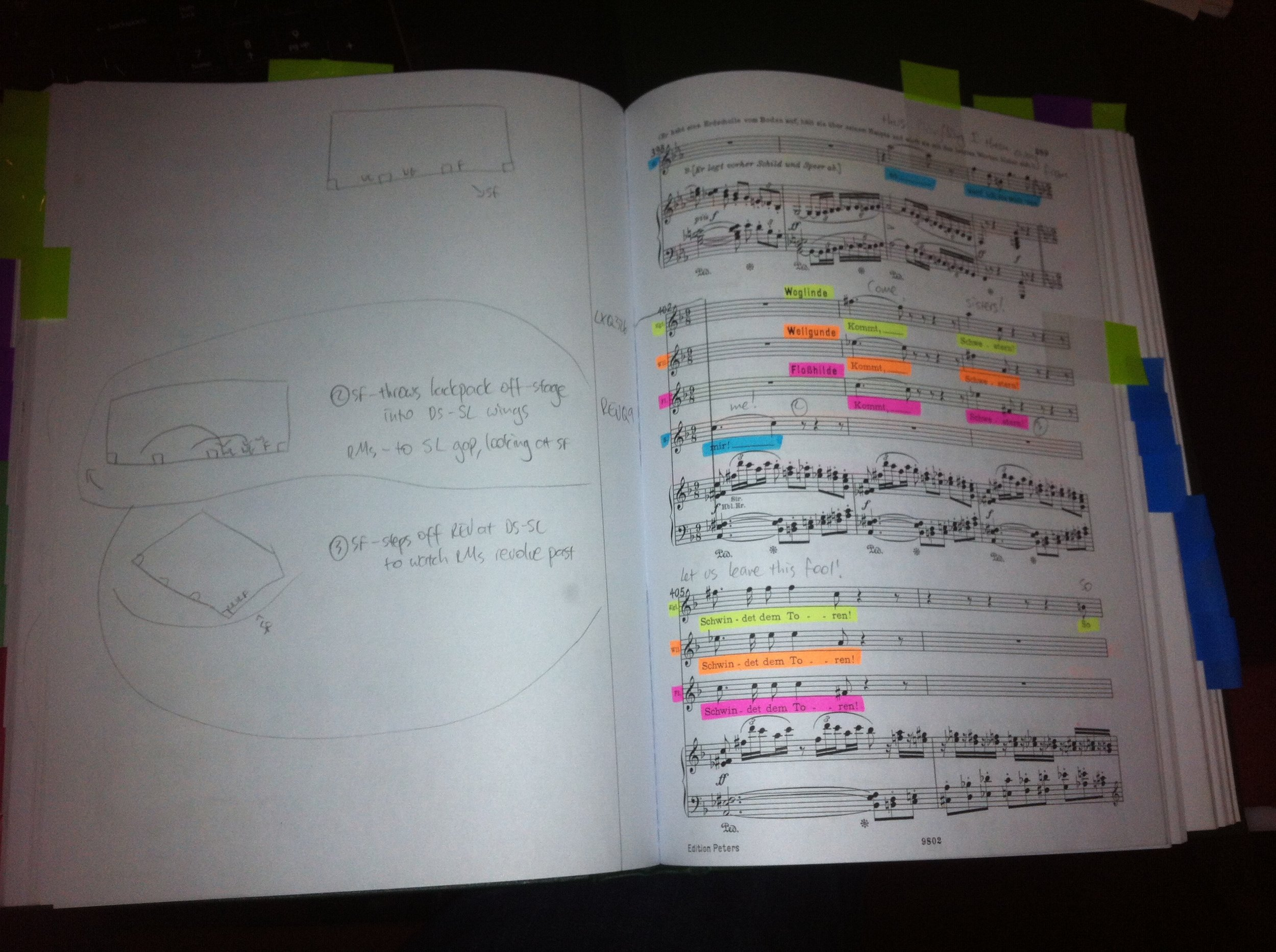 Greg's Gotterdammerung Score ... complete with lighting cues, diagrams, highlighting and multicoloured tabs!