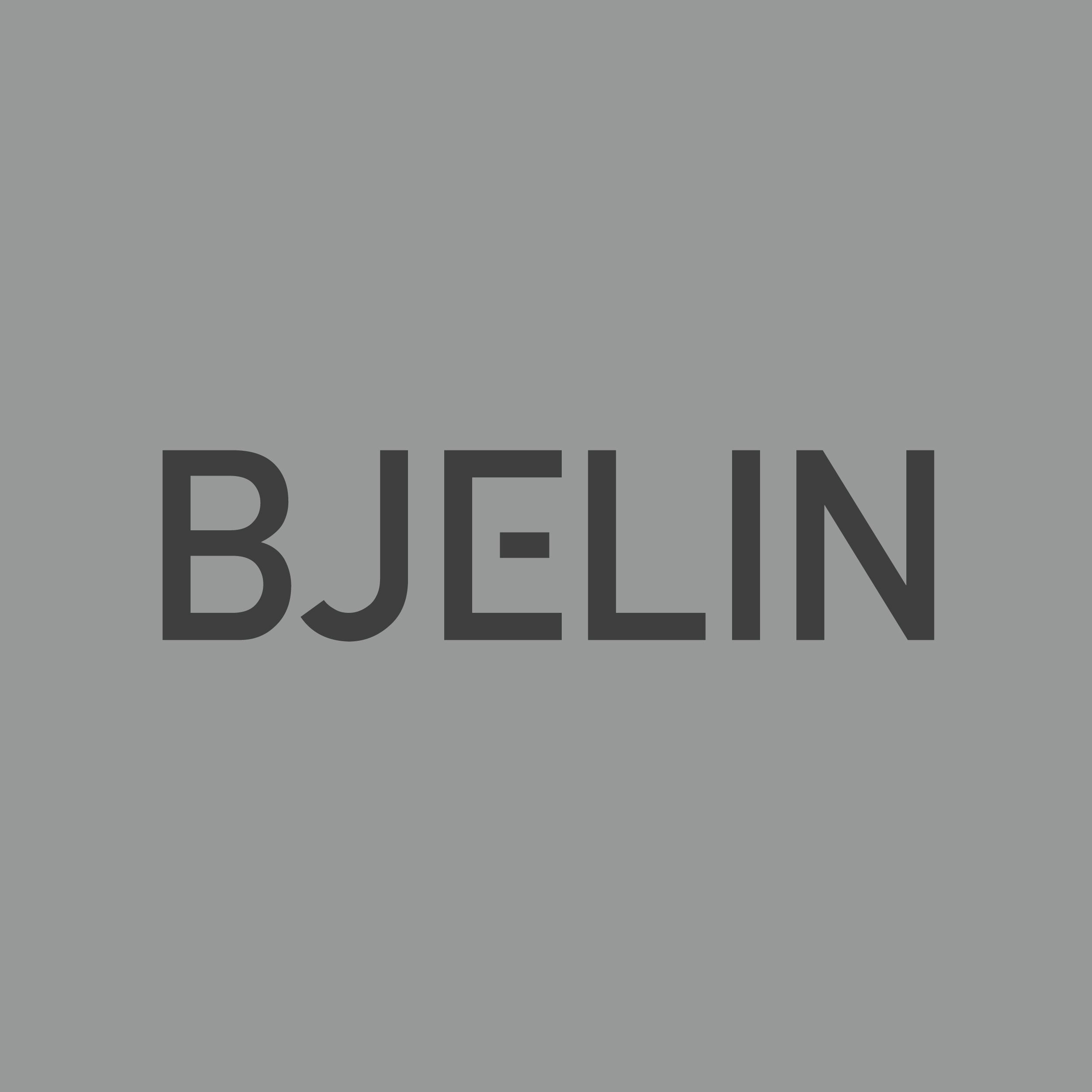 Bjelin logo.jpeg