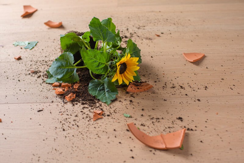 Woodura-dropped-flower-pot-.jpg