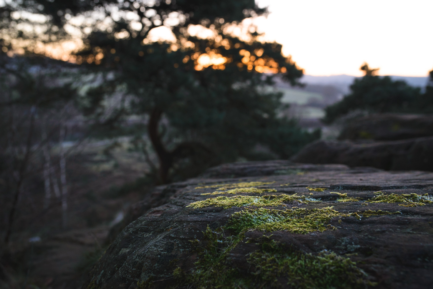 The view at sunset from the 'Devils Spittleful' in the Rifle Range nature reserve.