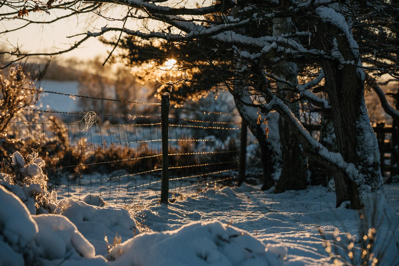 Winter snowfall in Worcestershire-12.jpg