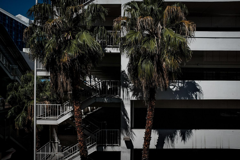 Las Vegas Photography-10-2.jpg