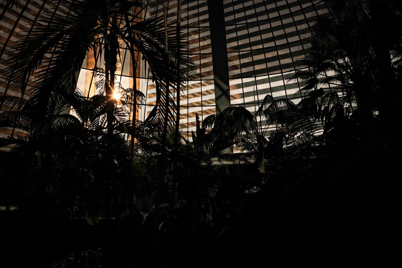 Las Vegas Photography-14-2.jpg