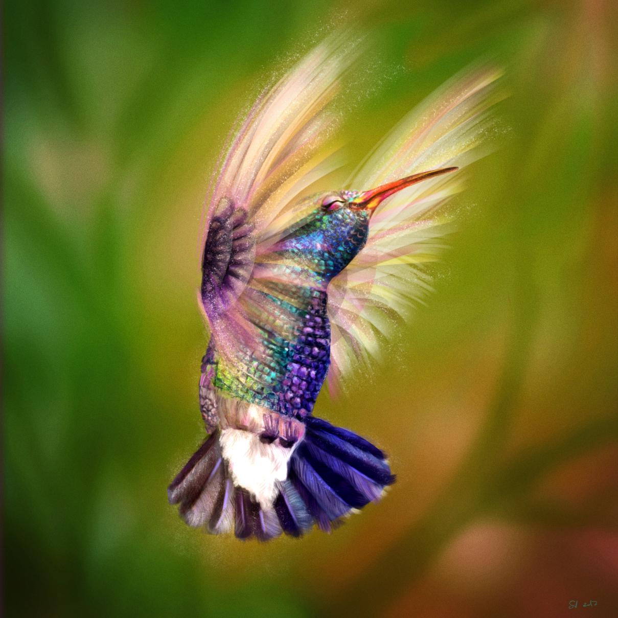 118_Birdie.jpg