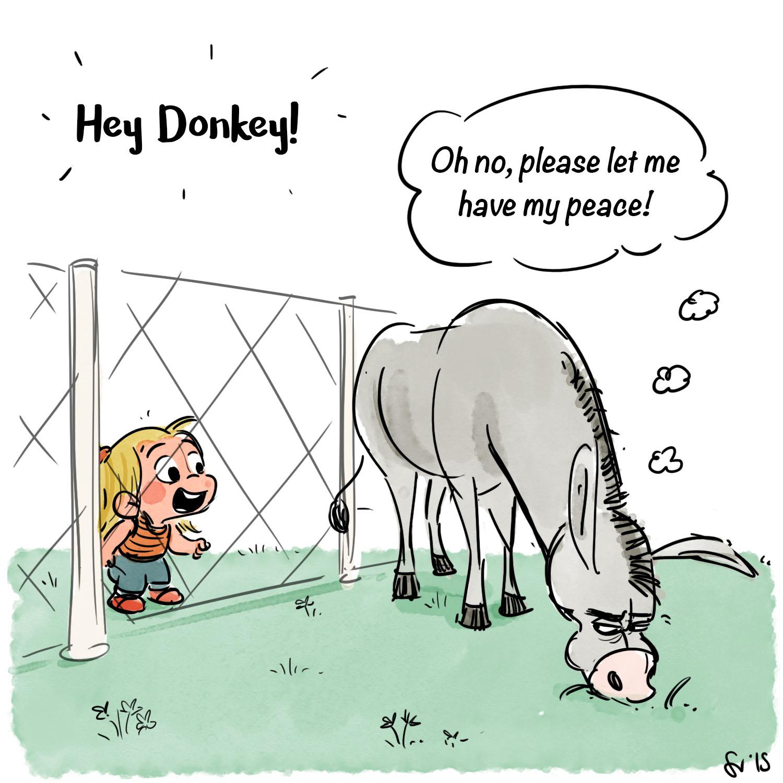 523_Donkey_1.jpg