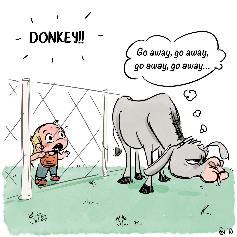 523_Donkey_2.jpg