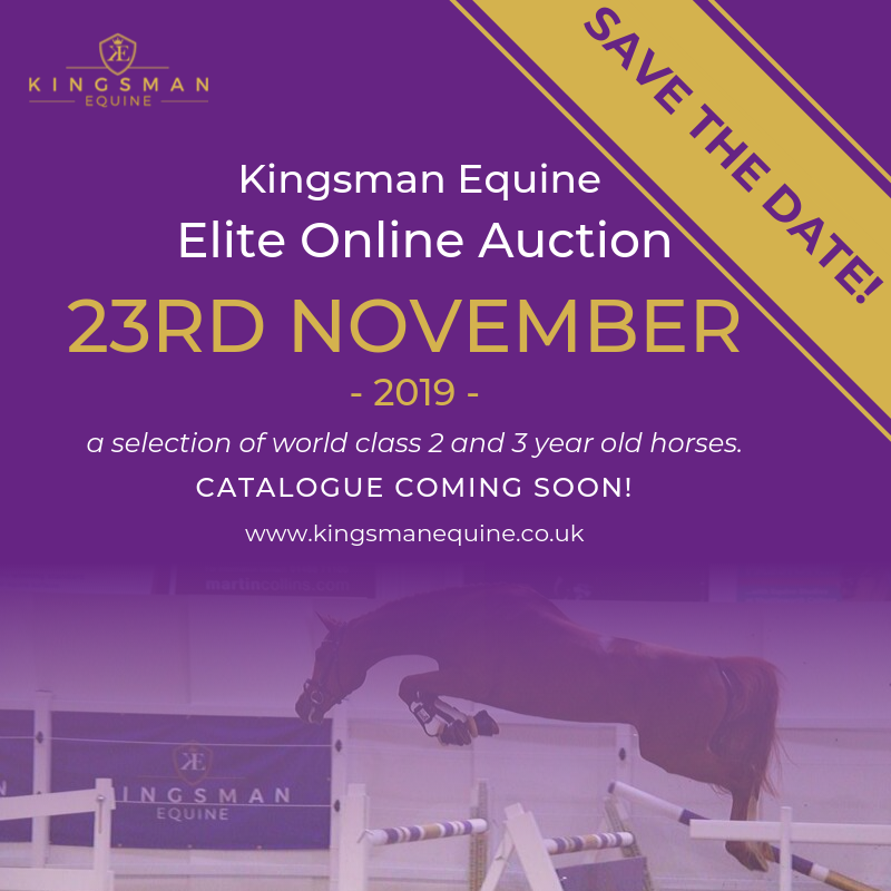 horse-auction-uk.png