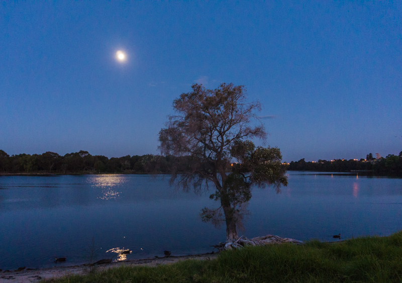 The serenity of the Swan River at night is a big attraction for blue collar nomads.