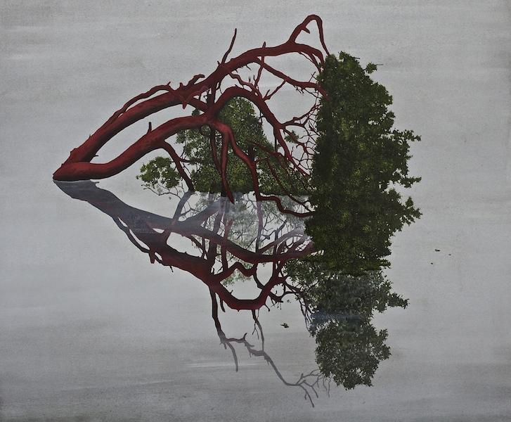 10. 'Vascular, Heart' (2015) 50x60cm Oil on aluminium.jpg