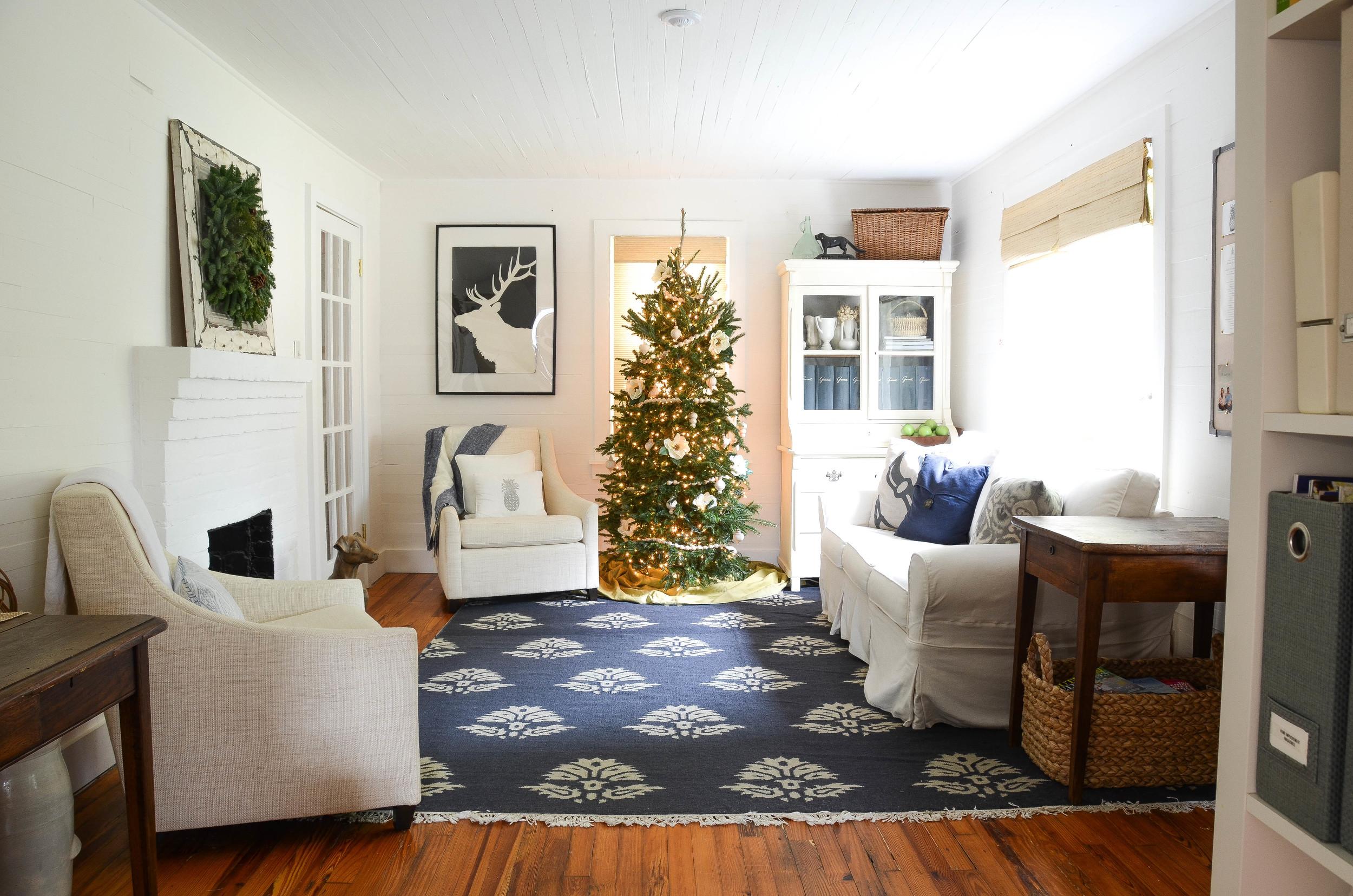 Small Cozy Living Room.jpg