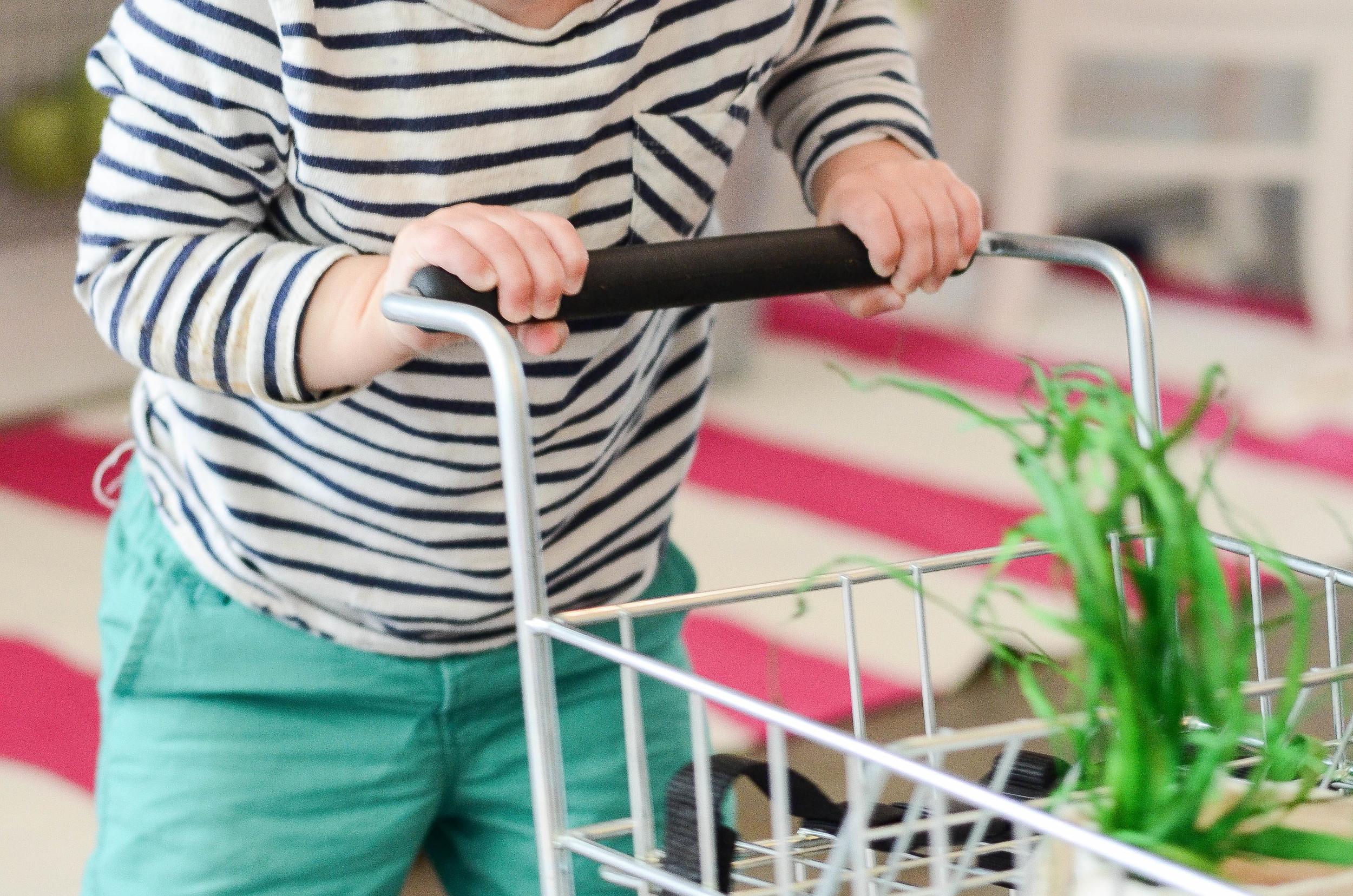kids play grocery cart.jpg