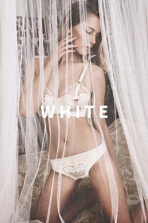 DSC_7031 copy LOW WHITE.jpg