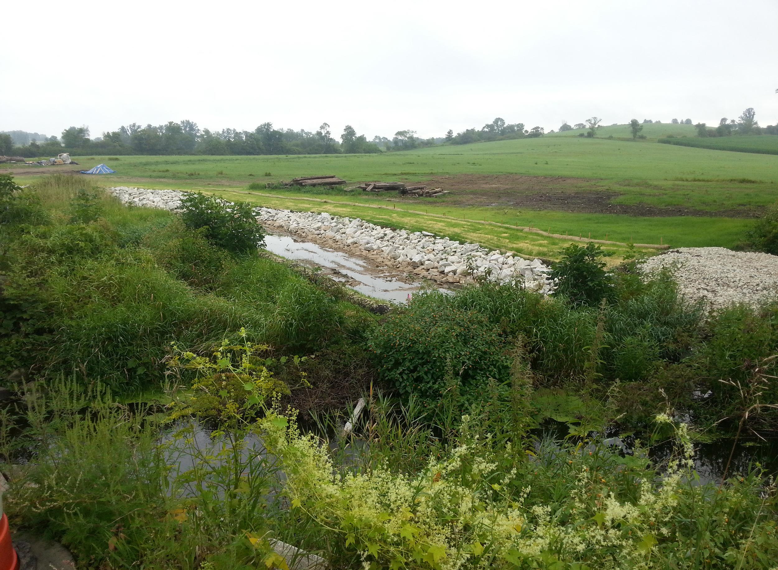 NR-creek-3.jpg