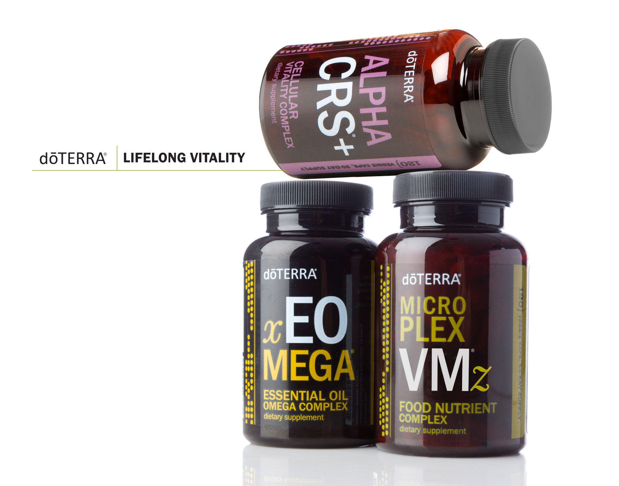 lifelong-vitality-1.jpg