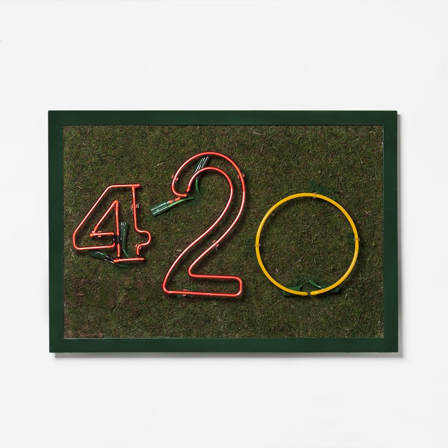 """420 / Neon / / """" x """" / 2016"""