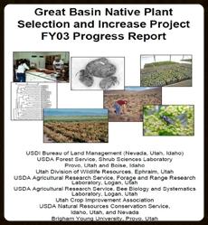 2003 Annual Progress Report