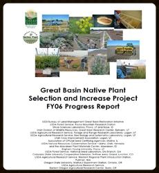 2006 Annual Progress Report