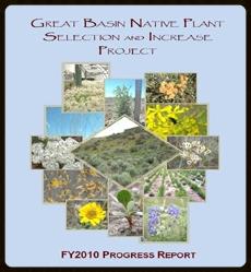 2010 Annual Progress Report