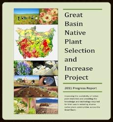 2011 Annual Progress Report