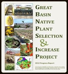 2012 Annual Progress Report