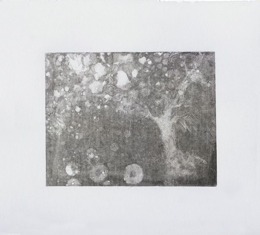"""""""Agitated Tree: Ghost Run,"""" monoprint, 15 x 22 inches (shown cropped), 2018."""