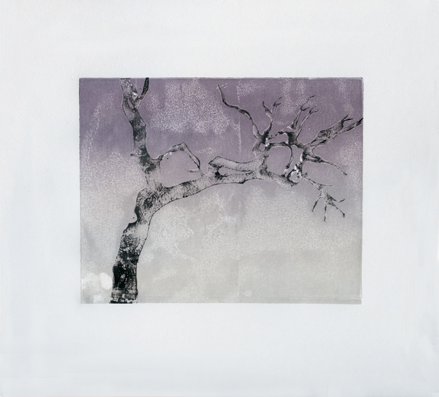 """""""Transparent Tree,"""" monoprint, 15 x 22 inches (shown cropped), 2018."""