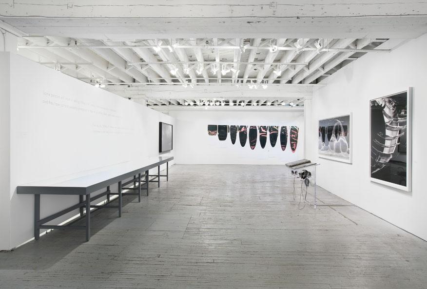 Ellen Carey, Edge of Vision @ Aperture, Ellen Carey Photography, Art, Artist, Photography, Installation
