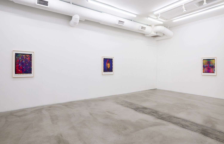 Ellen Carey / M+B Gallery   Los Angeles, CA   2015   ––