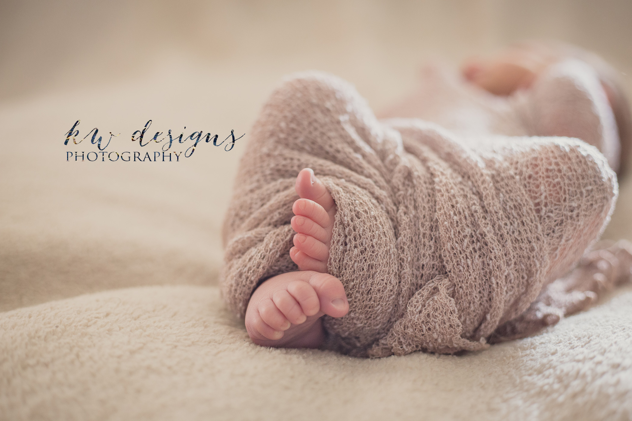 Lakewood Colorado Newborn Photographer