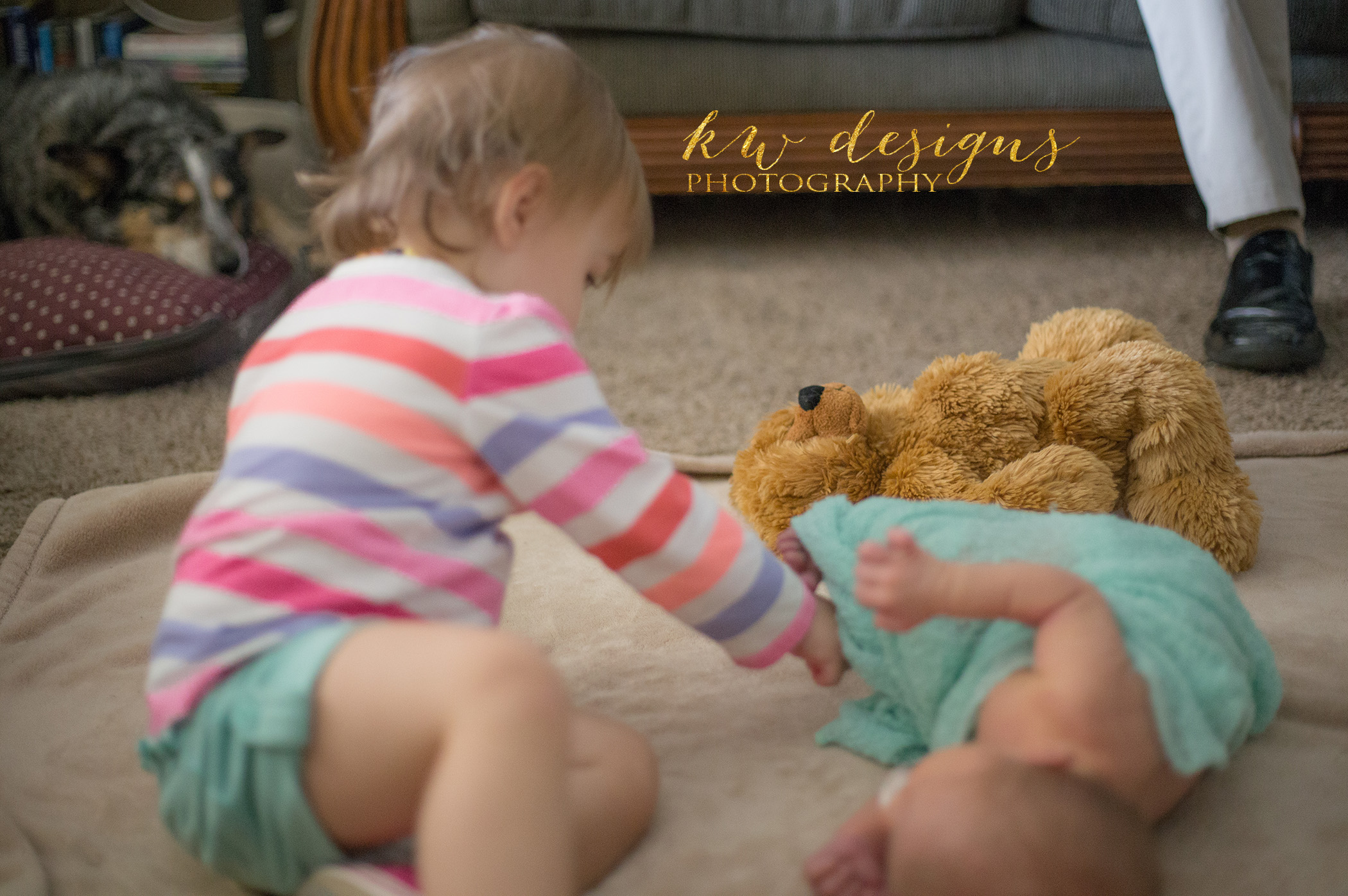 Newborn Photographer Lakewood Colorado